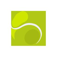 interaction_play_tennisball