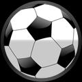 Balón de Soccer